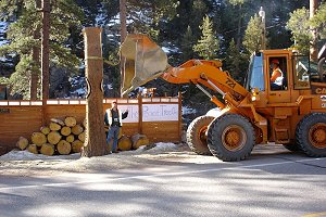 CDOT workers use a front-loader to steady the tree